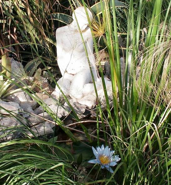 Никитский ботанический сад, Большая оранжерея