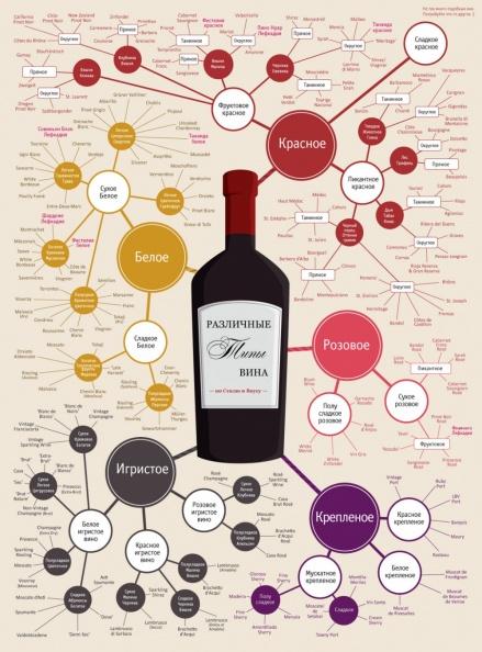 Типы вина, инфографика. Классификация по цвету, технологии, крепости