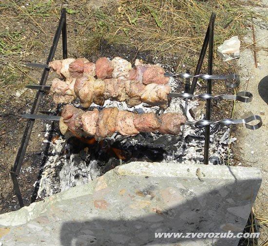 настоящий крымский шашлык готовится только из свинины, но в идеале поросенок должен вырасти на лесном корме, желудях, личинках и прочем экологически чистом и привольном питании