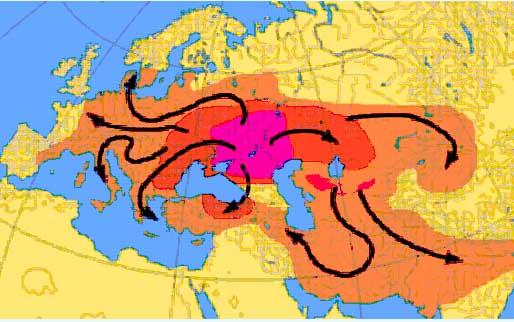 схема распространения в Евразии курганной культуры от центра приручения лошади и освоения верховой езды в районе Днепр - Дон