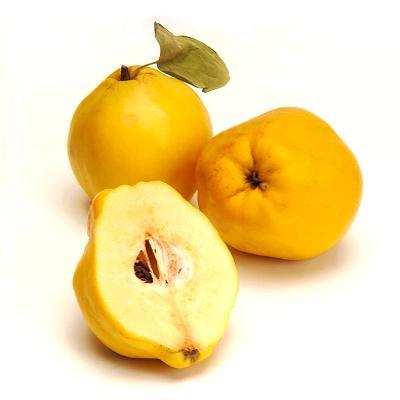 Как выглядят полностью созревшие плоды айвы? Рисунок, изображение, фото. Плод с листом и айва в разрезе